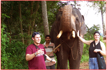 Lindy Deroo with friends with a tamed elephant