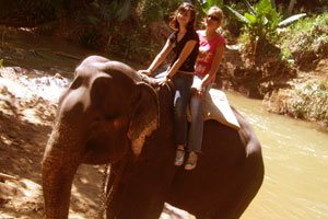 On a tamed elephant