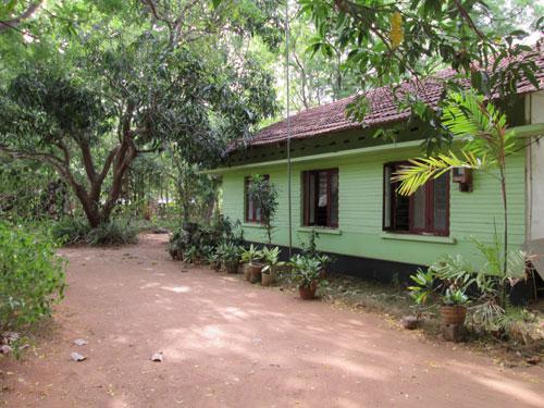A photo taken by Sampath Pethumsiri
