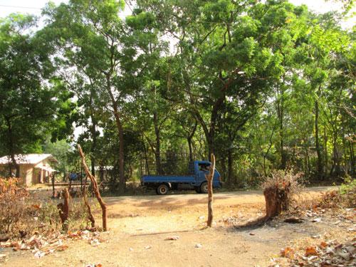 A photo taken by Sumudu Dilshan