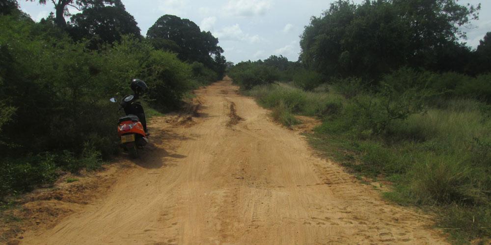 arippu-road1