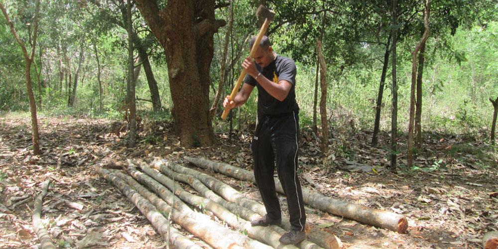 cutting-wood
