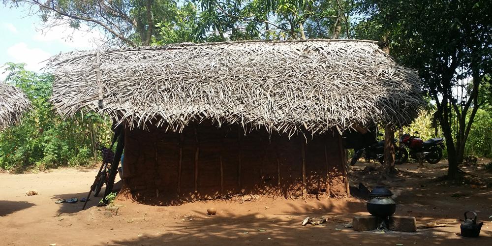 A thatched wattle house in Ambagahawewa