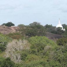 The Road to Tantirimale from Mahawilachchiya – Prince Leonard, India
