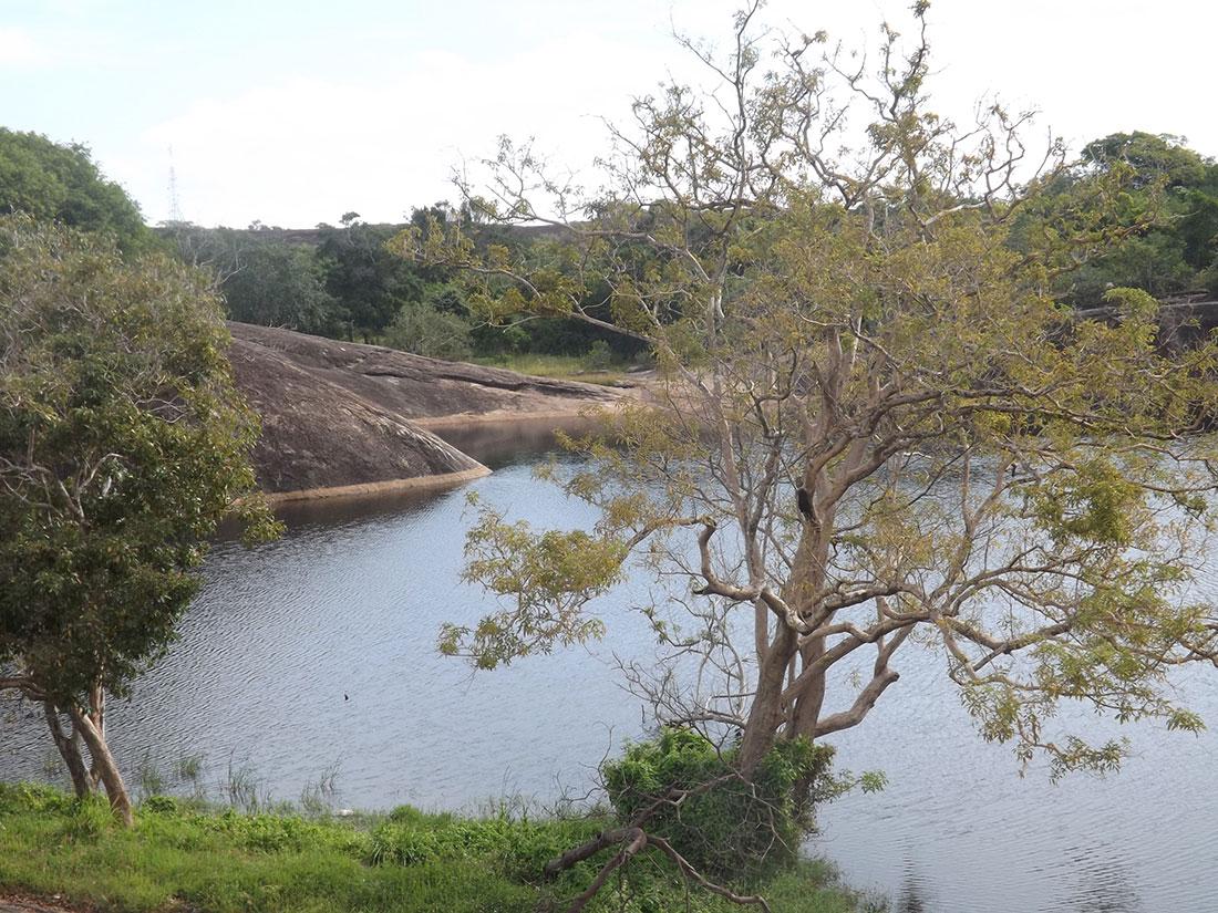 Natural pond at Tantirimale, Mahawilachchiya